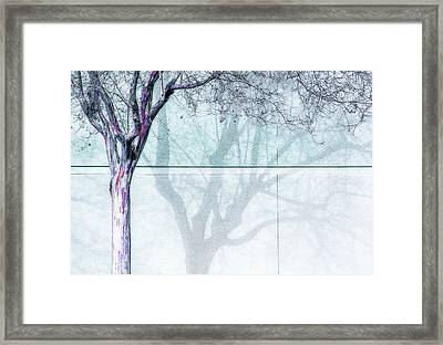 Wall Painting Framed Print by Terry Davis