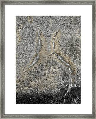 Wall Texture Number 2 Framed Print by Carol Leigh