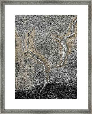 Wall Texture Number 3 Framed Print by Carol Leigh