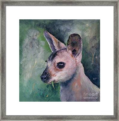 Wallaby Grazing Framed Print