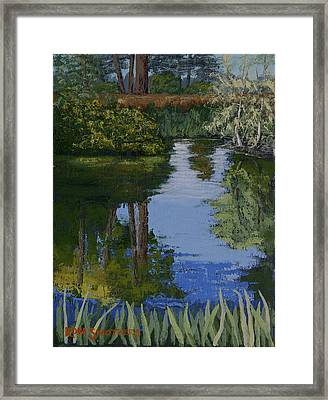 Waller Park Pond Framed Print by Ron Smothers
