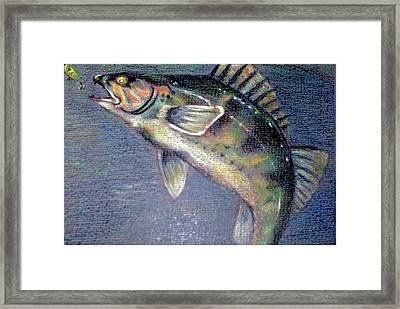 Walleye Framed Print by Adam Wallander