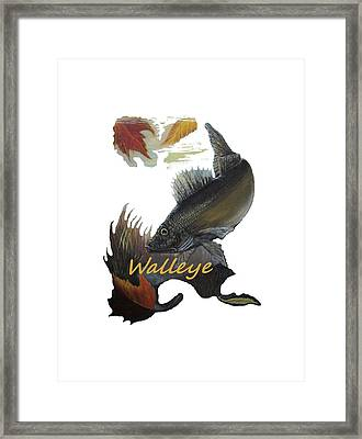 Walleye Transfer Framed Print by Kimberly Benedict