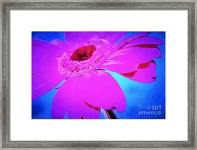 Wallflower Framed Print by Krissy Katsimbras