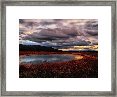 Wallkill River National Wildlife Refuge Framed Print by Raymond Salani III