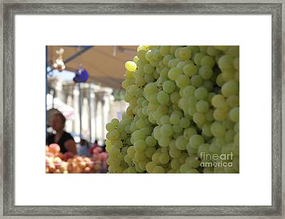 Walls Of Grapes In Athens Framed Print by Clay Cofer