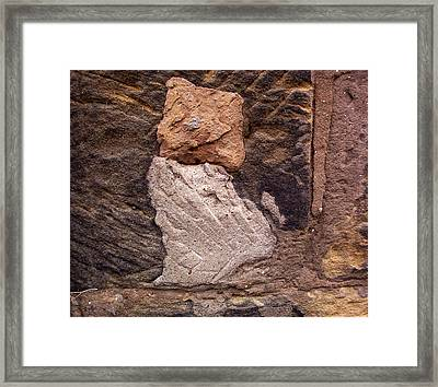 Wally Cat Framed Print by Maggie Insh