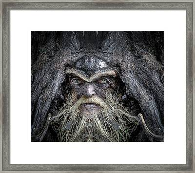 Wally Woodfury Framed Print