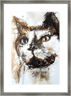Framed Print featuring the mixed media Walnut And Charcoal by Mary Schiros