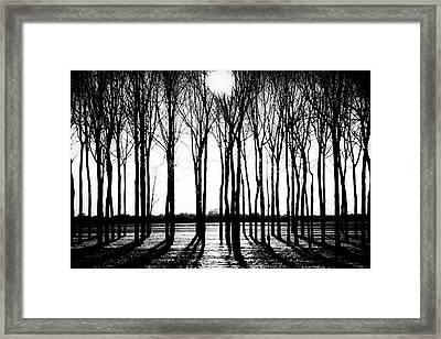 Walnut Grove Fall Evening Framed Print