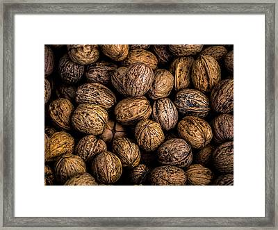 Walnut Harvest Framed Print by Kaleidoscopik Photography