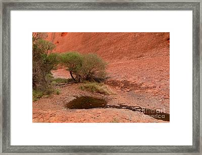 Framed Print featuring the photograph Walpa Gorge 01 by Werner Padarin