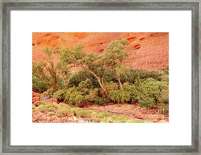 Framed Print featuring the photograph Walpa Gorge 03 by Werner Padarin