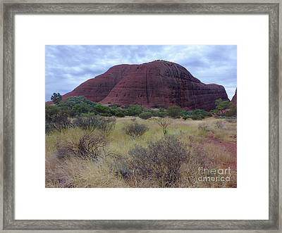 Walpa Gorge Walk Framed Print by Phil Banks