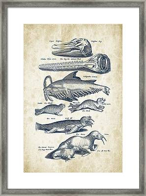 Walrus And Dolphins Historiae Naturalis 08 - 1657 - 43 Framed Print