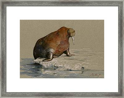 Walrus On Ice Framed Print by Juan  Bosco