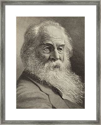 Walt Whitman Framed Print by American School
