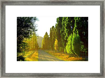 Wanaka Morning Light Framed Print