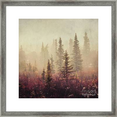 Wander In The Fog Framed Print by Priska Wettstein