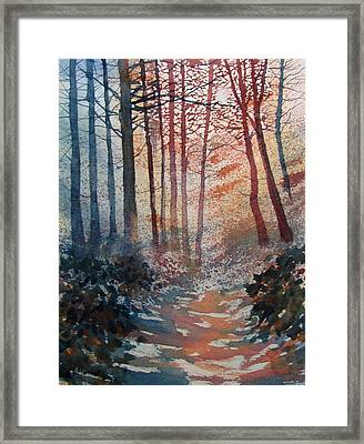 Wander In The Woods Framed Print