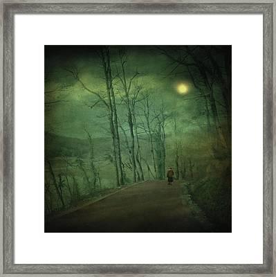 Wanderer Framed Print by Taylan Apukovska