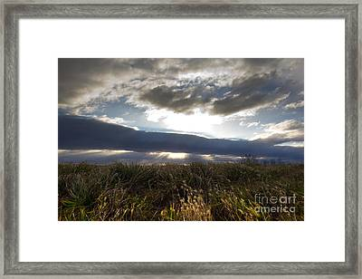 Wandering Heart Framed Print by Everett Houser