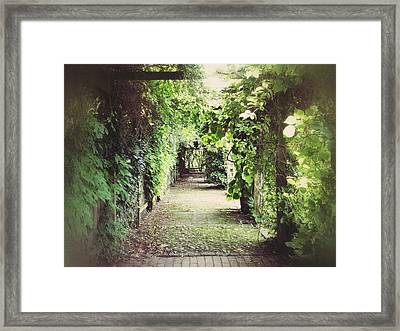Framed Print featuring the photograph Wandering by Karen Stahlros