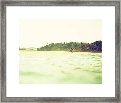 Wandering Framed Print
