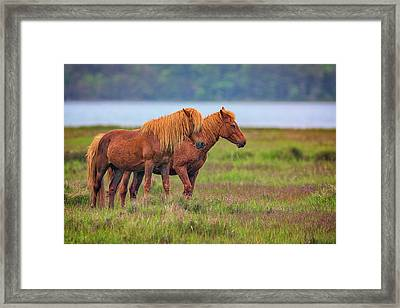 Wandering The Marsh Framed Print by Rick Berk
