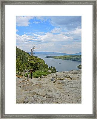 Wandering The Rocky Slopes Framed Print