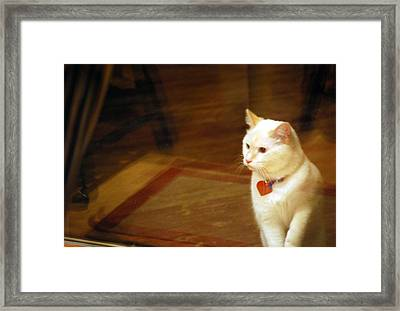 Wanting In To Your Heart Framed Print