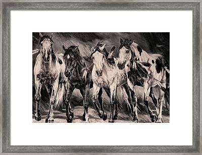 War Horses Framed Print