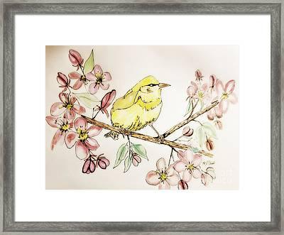 Warbler In Apple Blossoms Framed Print