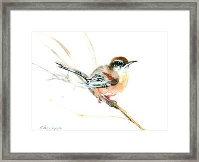 Warbler Songbird Art  Framed Print by Suren Nersisyan