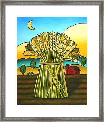 Wards Wheat Framed Print