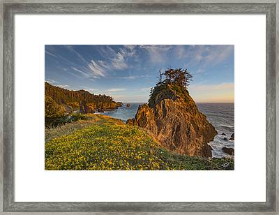 Warm And Peaceful Coast Framed Print by Leland D Howard