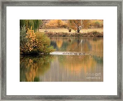 Warm Autumn River Framed Print by Carol Groenen