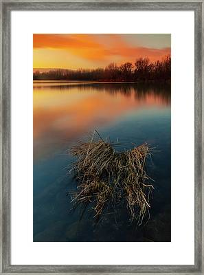 Framed Print featuring the photograph Warm Evening by Davor Zerjav