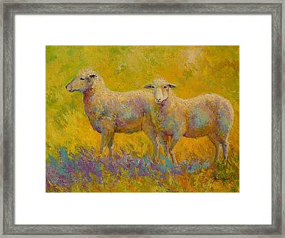 Warm Glow - Sheep Pair Framed Print by Marion Rose