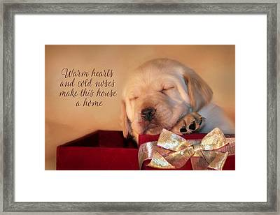 Warm Hearts Framed Print by Lori Deiter