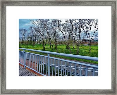 Warm Rainforest  Framed Print