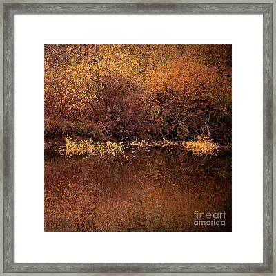 Framed Print featuring the photograph Warm Reflection by The Forests Edge Photography - Diane Sandoval
