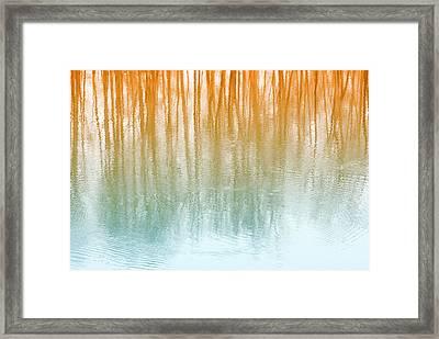 Warm Reflections Framed Print