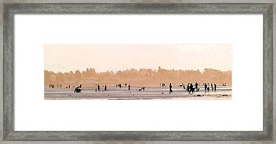 Warm Summer Framed Print by Barbara  White