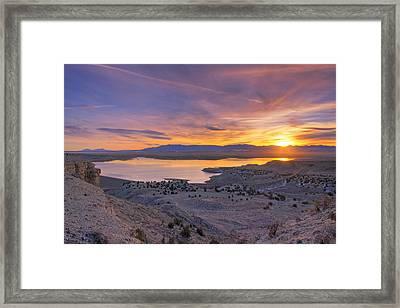 Warm To The Touch Framed Print
