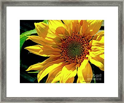 Warm Welcoming Sunflower Framed Print