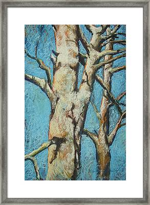 Warming Light Framed Print by Marlene Gremillion