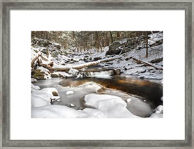 Warming Winter Framed Print by Bill Wakeley