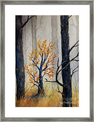 Warmth In Winter Framed Print