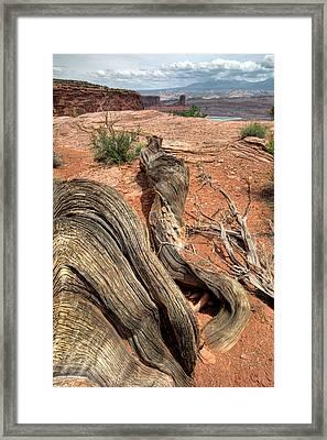 Warped Framed Print by Ryan Heffron